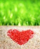 Hjärtatecken på naturbakgrund arkivfoton