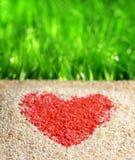 Hjärtatecken på naturbakgrund royaltyfria bilder