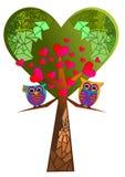 Hjärtaträd och uggla Royaltyfria Foton