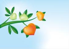 hjärtatree Royaltyfria Bilder