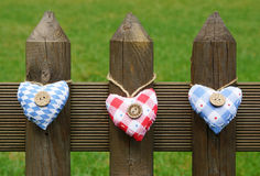 Hjärtor på trädgårds- staket royaltyfria bilder