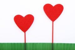hjärtor två Fotografering för Bildbyråer