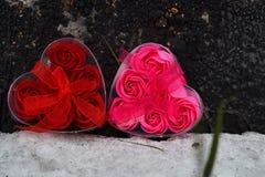 hjärtor två röd och rosa hjärta i snön fotografering för bildbyråer
