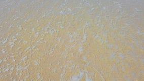 Hj?rtaform p? sanden som torkade av vid havsv?gen