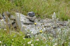 Hjalparfoss em Islândia sul, Europa Imagens de Stock Royalty Free