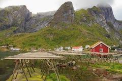 Hjell, strutture di legno dello stoccafisso in Reine, Norvegia Immagine Stock Libera da Diritti