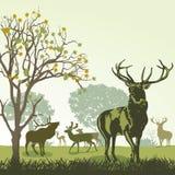 Hjortar och djurliv stock illustrationer