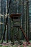 Hjortar okontrollerat i mörk skog arkivbild