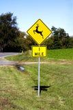 Hjortar som korsar riktningsvägmärket Arkivbild