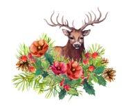 Hjortdjuret, vinter blommar, granträdet, mistel Vattenfärg för julkort Royaltyfria Bilder