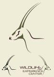 Hjortillustration vektor illustrationer