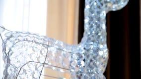 Hjortkristallexponeringsglas stock video