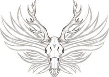 Hjortskalle med horn Arkivfoton
