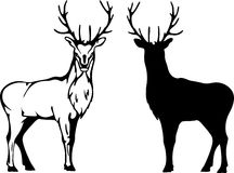 hjortvektor Arkivbilder