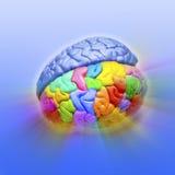 hjärnkreativitet Arkivfoton