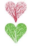 hjärta formad tree Arkivfoto