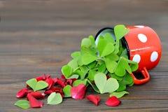 Hjärta formade sidor och röda roskronblad Arkivfoto