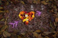 Hjärta Shape vid vårblomman och sidor Arkivbild