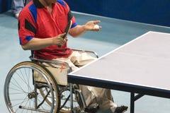 hjul för bordtennis för inaktiverade personer för stol Royaltyfri Bild
