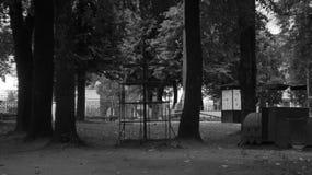 hjul för vektor för park för munterhetferrisnatt Fotografering för Bildbyråer