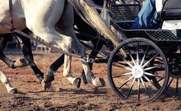 Hjul från selet Royaltyfria Foton