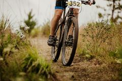 Hjul och bencyklist royaltyfri bild