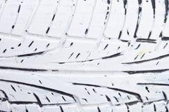 Hjulbeskyddande Vit gummihjuldäckmönster royaltyfri illustrationer