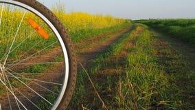 Hjulet av en cykel på naturen Berg som cyklar i bygden En cykel på en landsväg stock video