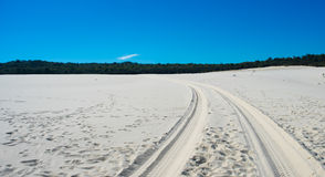 Hjulspår på sand Royaltyfri Fotografi