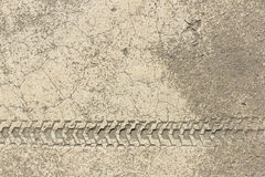 Hjultryck av cykeln på cementtextur Arkivbilder