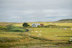Hlidarendi, Iceland Stock Images
