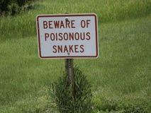 Håll ögonen på ut för ormar Royaltyfria Bilder