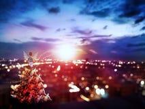 hållande ögonen på soluppgång för felikt barn på cityscape Royaltyfri Bild