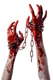 Hållande kedja för blodig hand, blodig kedja, halloween tema, vit bakgrund som isoleras Royaltyfri Bild