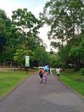 Hållande paraplyer för folk i regnet Royaltyfria Foton