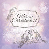Hälsningkort för glad jul med domherreer och snöflingor på den lila lutningbakgrunden med solljus Royaltyfria Bilder
