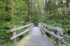 Hölzerne Fuß-Brücke entlang Wanderweg Stockfoto