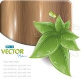 Hölzerne Planke mit Grünblättern und -basisrecheneinheit Stockbilder