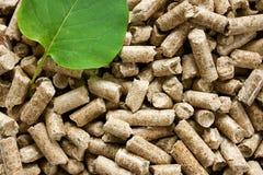 Hölzerne Tabletten mit einem grünen Blatt Stockfotografie