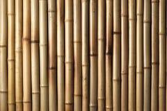 Hölzerner Bambushintergrund Lizenzfreie Stockbilder