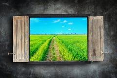 Hölzerner Fensterrahmen auf Steinwand und Ansicht des grünen Feldes Lizenzfreie Stockfotos