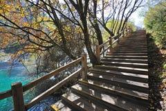 Hölzerner Pfad im Herbstwald Stockfoto