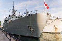 HMCS-gåsfjärd Fotografering för Bildbyråer