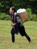 Hmong妇女 免版税库存照片