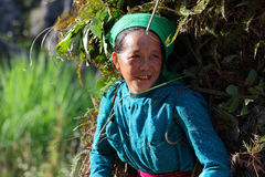 hmong Royaltyfria Foton
