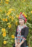 Hmong flicka med caltureklänningen och lotusblomma royaltyfri fotografi