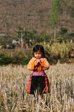 Hmong girl posing, vertical Stock Photography