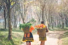 Hmong girl with tradiyional dress with basket. Of agricultural crops walking in the forest Royalty Free Stock Photos