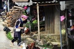 Hmong kobiety niosą firewook i odprowadzenie w ranku rynku wsi Wietnam obraz royalty free