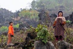 Hmong mniejszości etnicznej rolniczy pracownicy fotografia royalty free